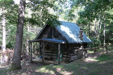 Primitive Log Cabin in the Woods