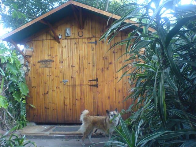 Jungle Hut - Pinetown - Cottage