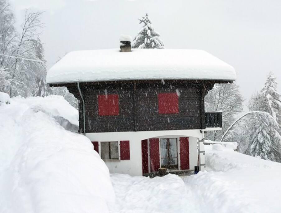 Régulièrement plein de neige