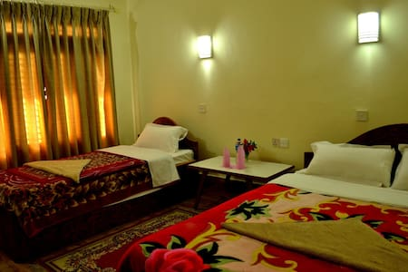Deluxe Double or Twin Room - Sauraha