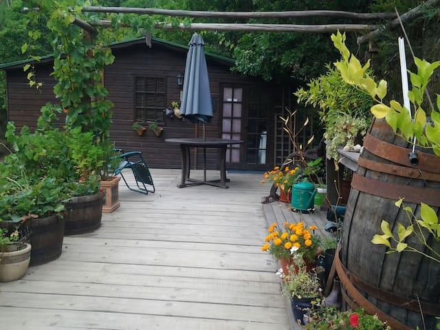Cosy Mountain Cabin Benfeita - Coja,