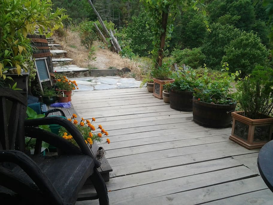 Steps and walkway to Cabin