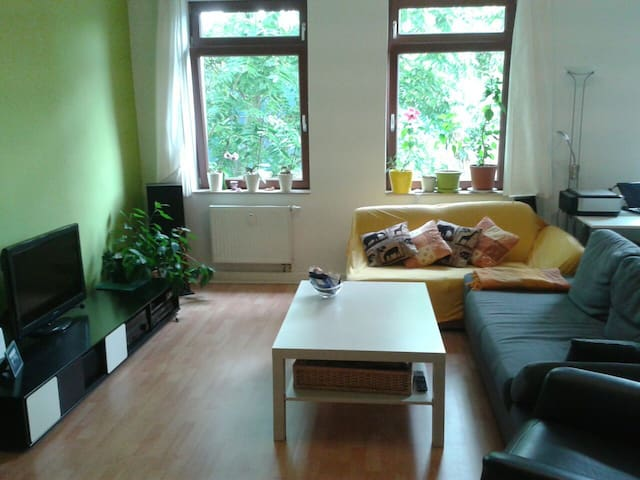 Large private room near the center - Magdeburg - Apartemen