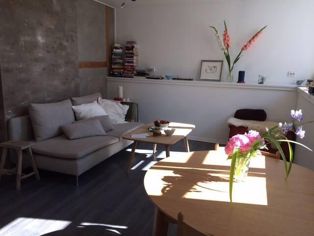 Living room (not current furniture)