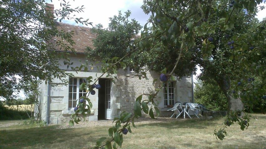 La petite maison dans la prairie - Oyré - Rumah