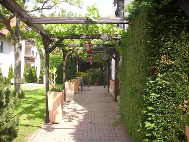 Schönes Ein-Zimmer-Apartement - Deidesheim - Flat