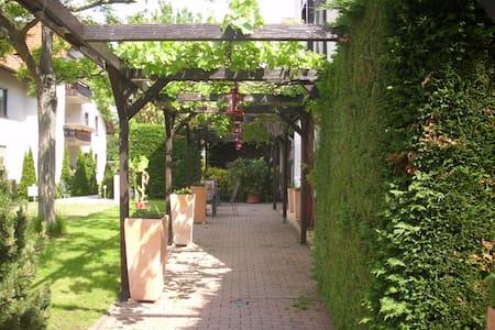 Schönes Ein-Zimmer-Apartement - Deidesheim