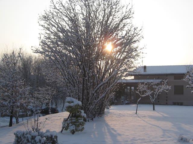 le stagioni a treviso - Falzé di Piave - Bed & Breakfast