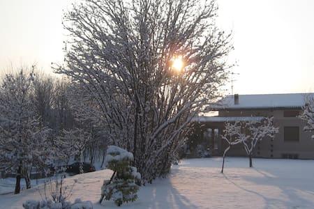 le stagioni a treviso - Falzé di Piave