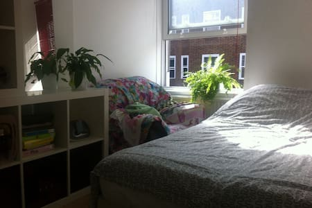 Room in City of London/Shoreditch