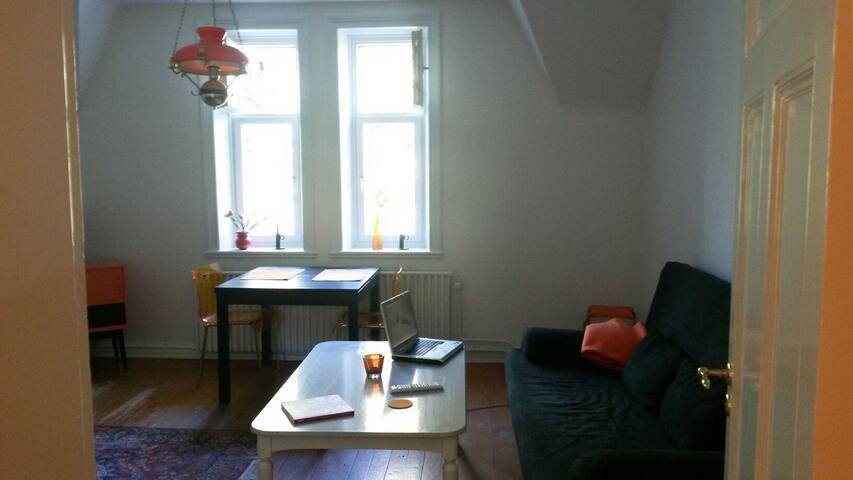 Liten etta i centrala Norrköping - Norrköping - Apartment