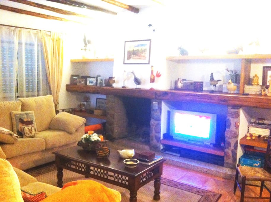 Living room with fireplace (1/2)