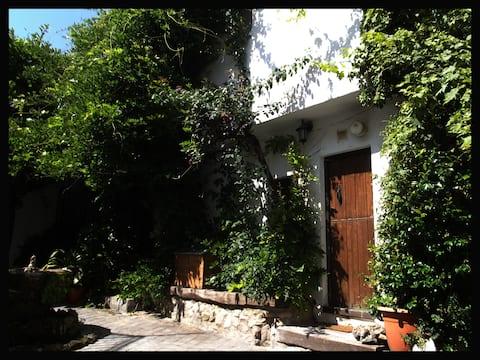 Little mountain village house