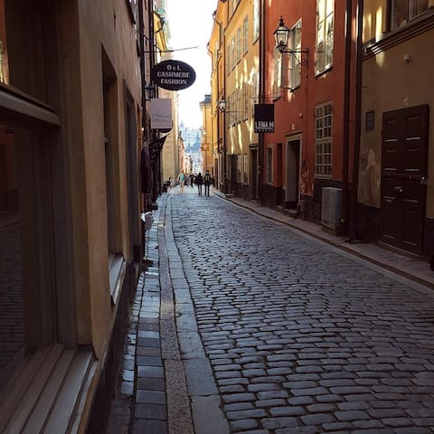 Twofloor apt- Old Town Stockholm - Stockholm - Apartemen