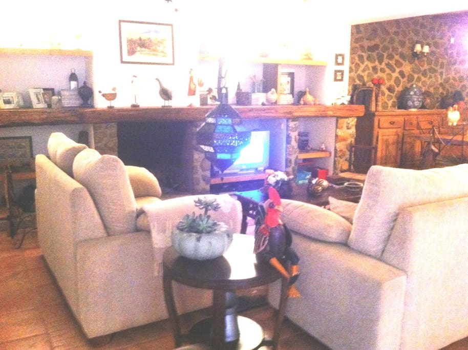 Living room with fireplace (2/2)