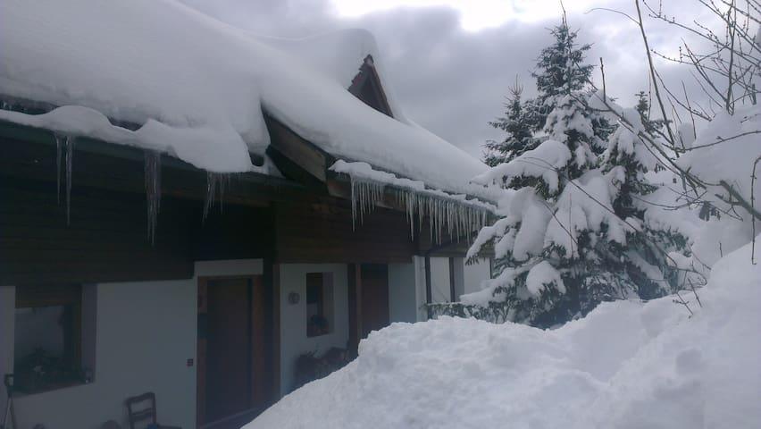 Tolle, sonnige Lage - Sankt Blasien - Huis