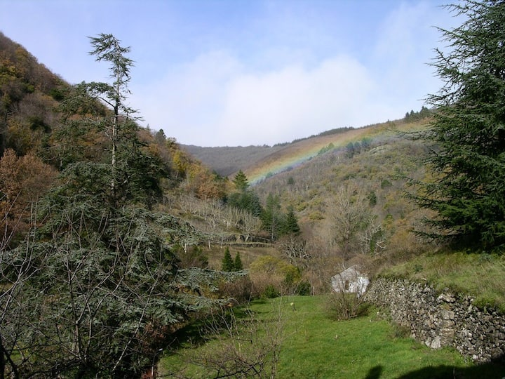 La Voix du Ruisseau (Grande Yourte)