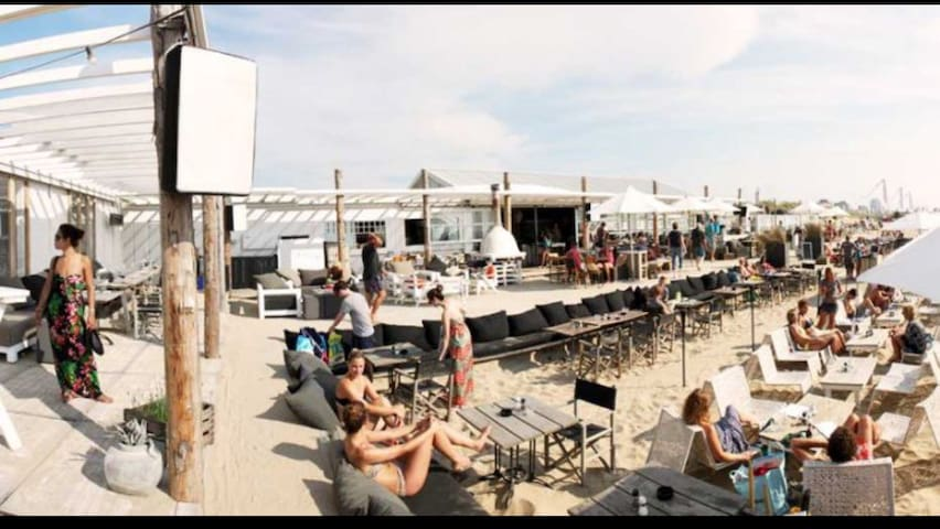 Tuinhuisje nabij Noordwijks strand. - Noordwijk - Chalet
