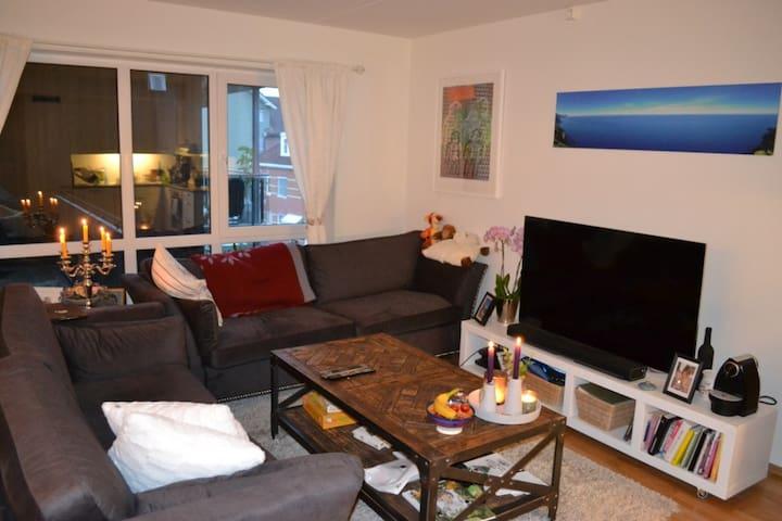 Ny leilighet i Kongsberg sentrum.
