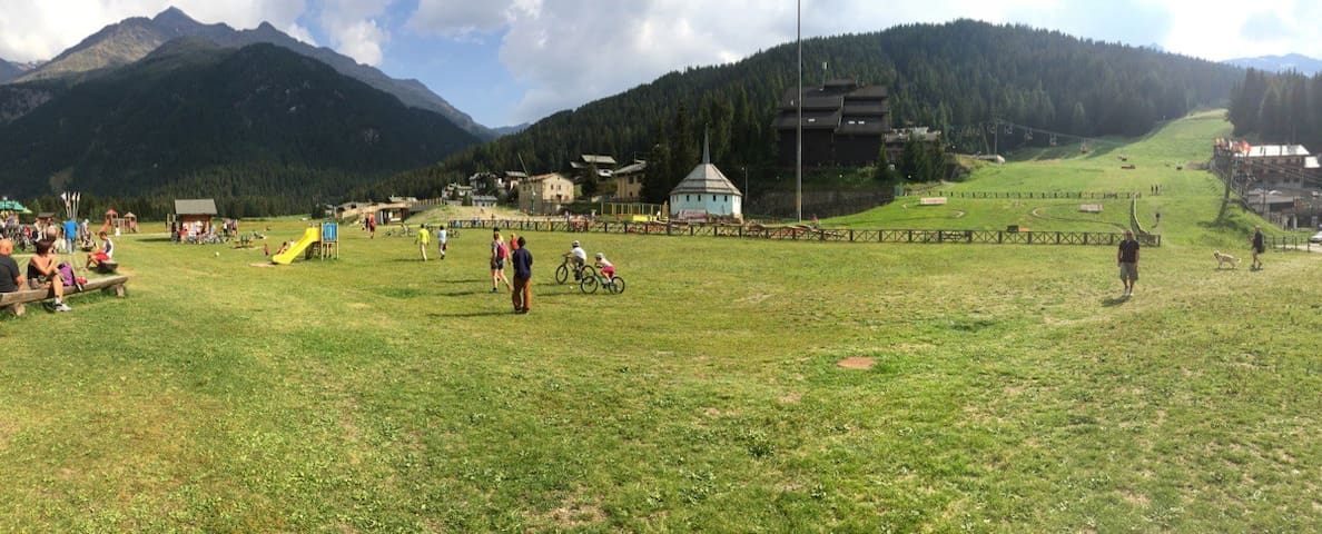 monolocale 4 C sulle piste da sci - Santa Caterina di Valfurva - Daire