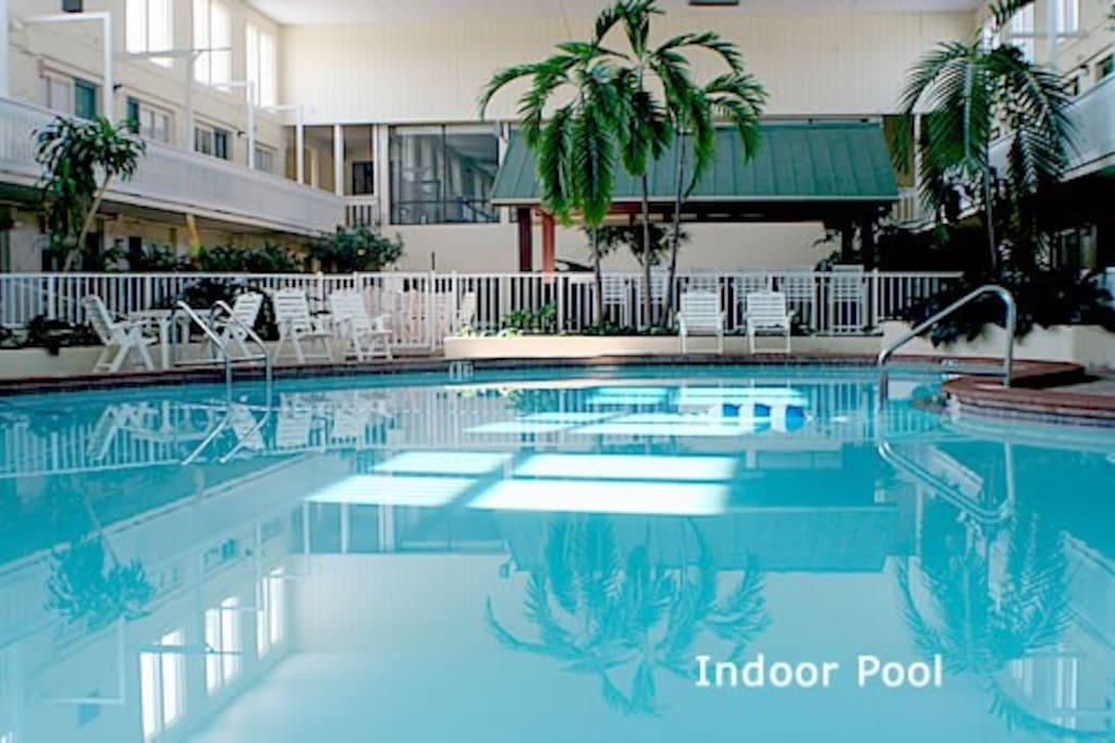 Club Destin 1 Bedroom Condo Condominiums For Rent In Destin Florida United States