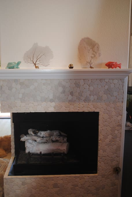 Pebble stone gas fireplace for nights it may get below 60 :)
