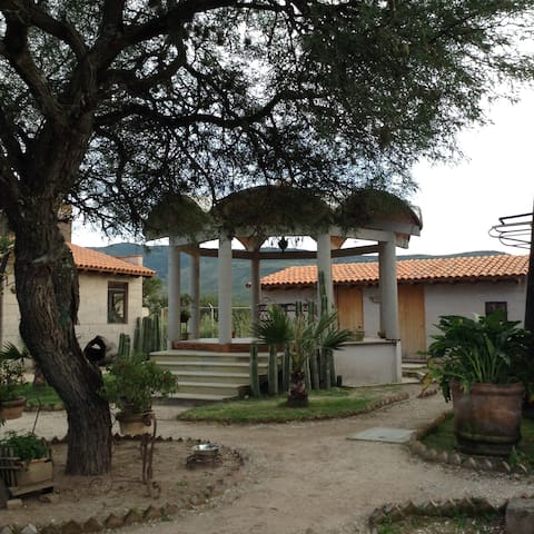 Chalet in San Miguel de Allende - ซาน มิเกล เดอะ อเลนเด - บ้าน