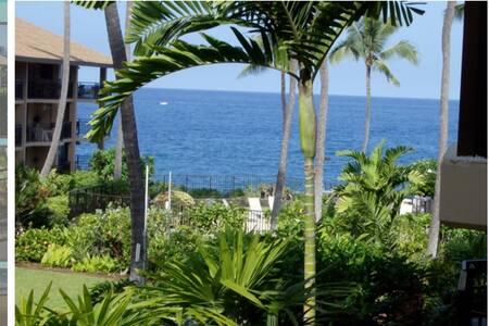 Beautiful Oceanfront quiet complex