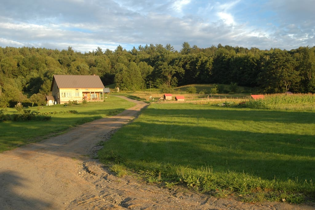 Overview of the farm