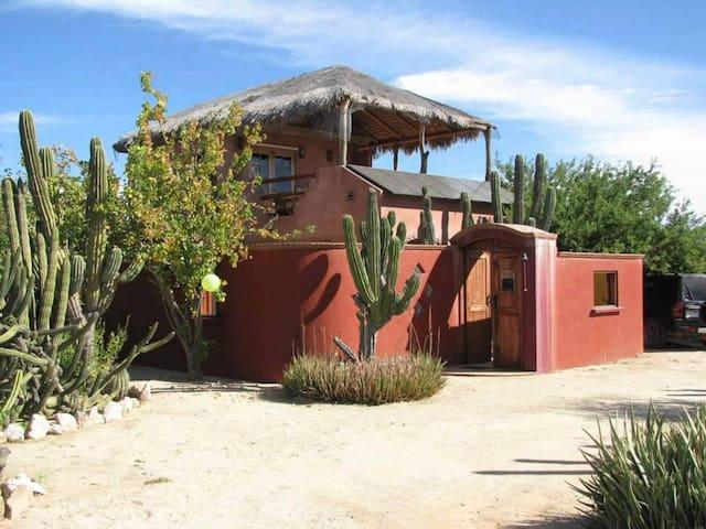 Cabo Pulmo ~ Casa Cactus ~ 2 Suites - Cabo Pulmo - House