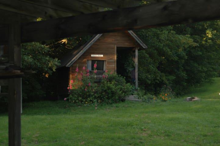 A Small Cabin at Four Springs Farm - Royalton - Cabin