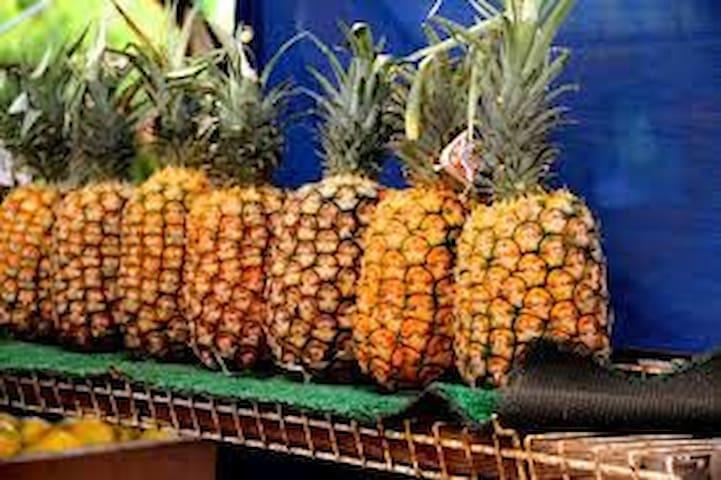 *Kauai's Aloha Studio* - Kalaheo