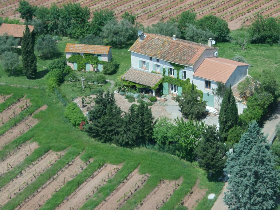 La Peyrardiere surrounded by vineyards