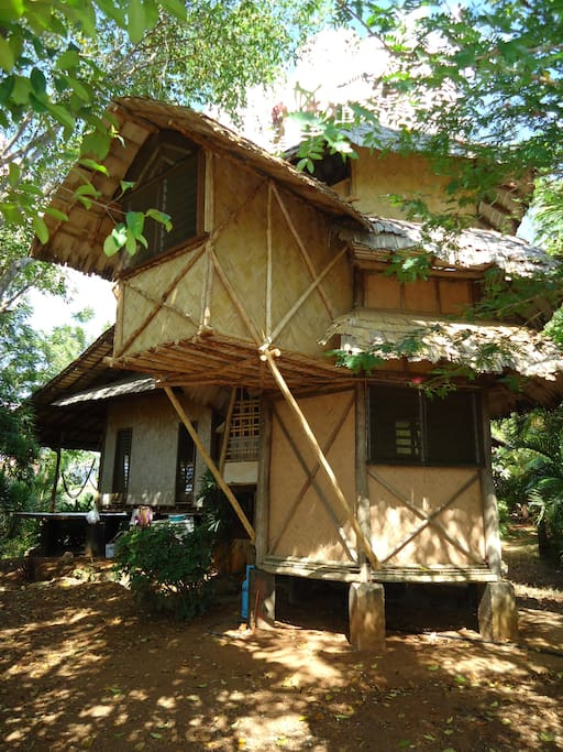 This is the back of the Pagoda tree house