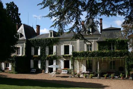 Château de la Marsauderie - Villiers-sur-Loir