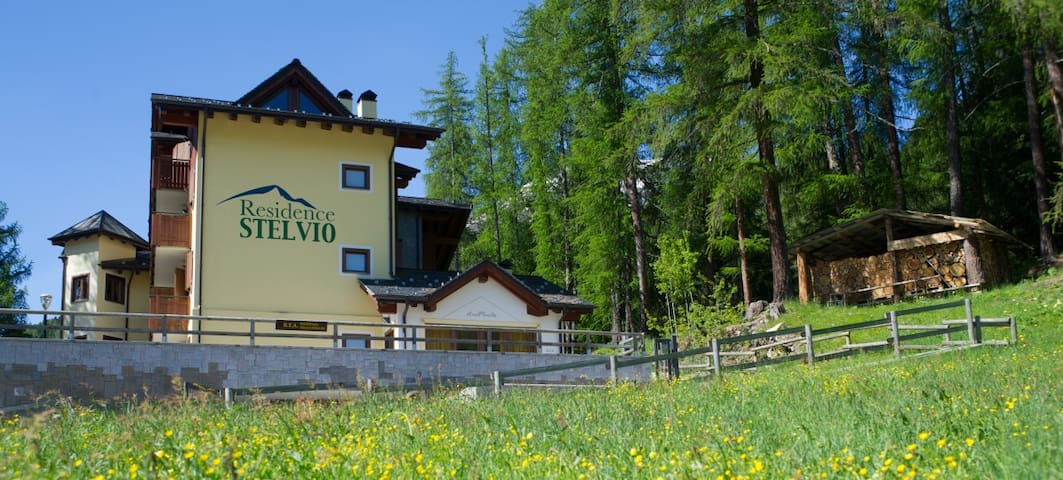 RESIDENCE DELLO STELVIO - Oga (Valdisotto) - Appartement