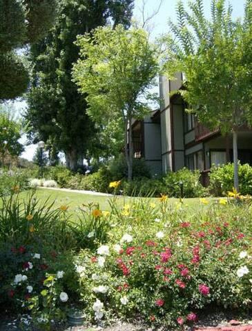 San Diego Luxury Resort! - Ramona - Condominium