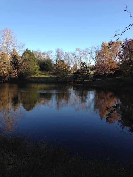 Enjoy walking on the visitors side of the 3 acre lake, but please no boating, swimming or fishing.  We do have fishing parties, ask about them if interested.