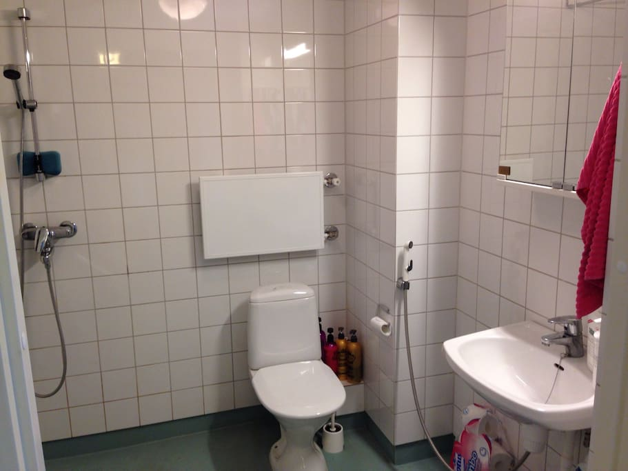 Bathroom includes hair dryer and towels.
