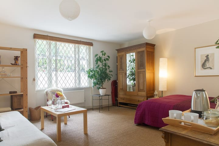 V spacious room in leafy Camberwell