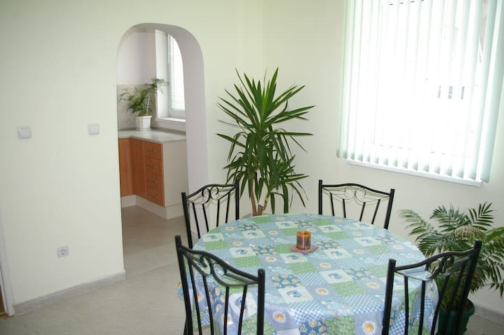 Apartment with beautiful garden - Sofia - Townhouse