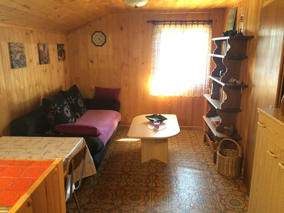 Salon avec divan pouvant se transformer en lit de fortune