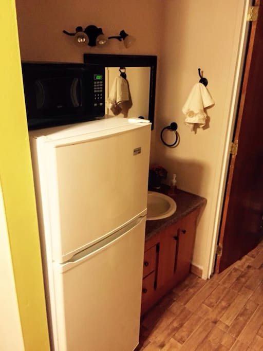 Refrigerator and sink area
