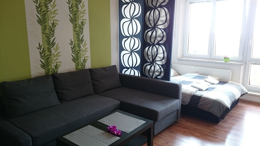 The cozy rooftop apartment - Orlová - Daire