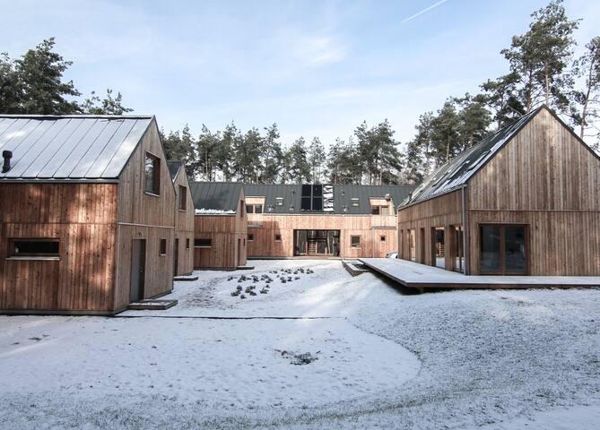 Skandynawski styl w środku lasu Domek Terra