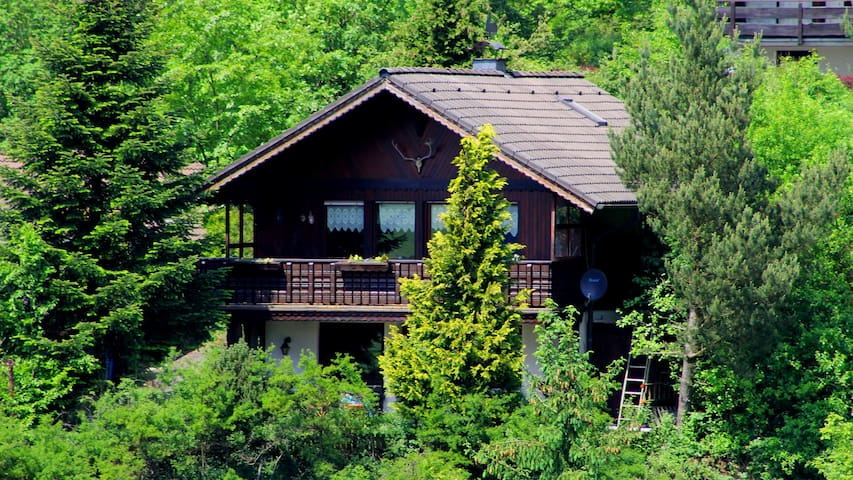 An idyllic, cosy retreat by the forest. - Hatzfeld (Eder) - Casa