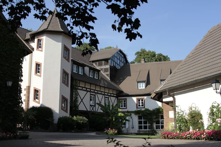 Le Moulin Vollach (22 guests max)