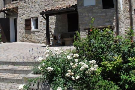 CasaMatilde vacanza green per famiglia-weekend too - Viano