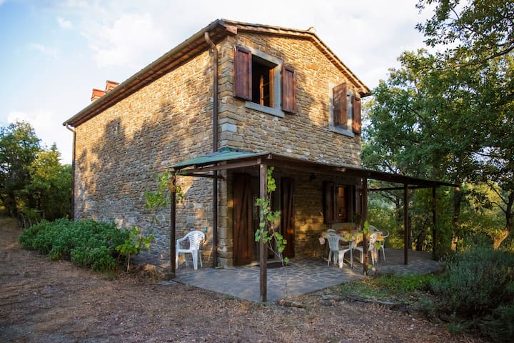 Quiet Tuscan country home with view - Montecchio - House