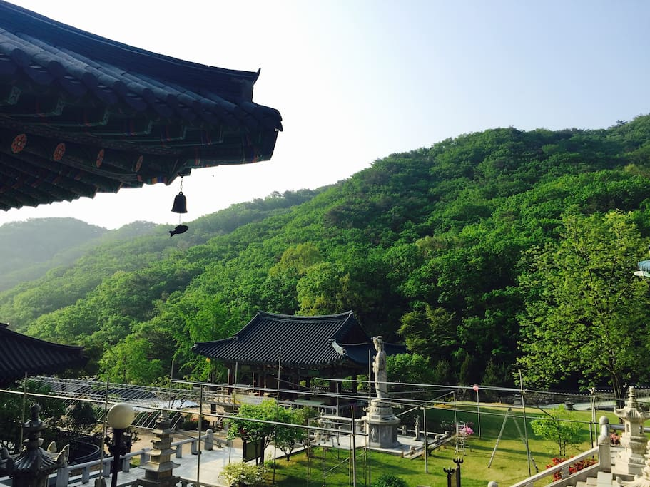 The buddhist Temple, which is located in the mountain near my house.